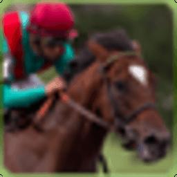 赛马:免费游戏 休閒 LOGO-玩APPs