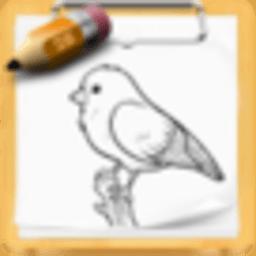 绘制小鸟 工具 App LOGO-硬是要APP