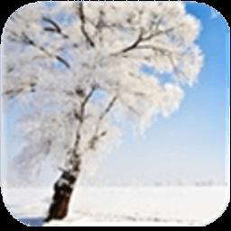 唯美雪景手机动态壁纸 休閒 App LOGO-硬是要APP