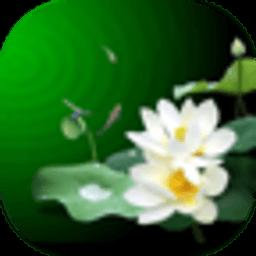 盛夏荷花动态壁纸 工具 App LOGO-APP試玩