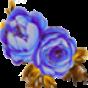 Flower连连看 娛樂 App LOGO-硬是要APP