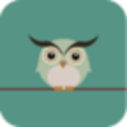 宝软3D主题-小小猫头鹰 工具 App LOGO-硬是要APP