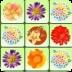 鲜花连连看 休閒 App LOGO-APP開箱王