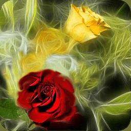 3D爱情之花 工具 App LOGO-硬是要APP