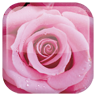 Rose 工具 App LOGO-APP試玩