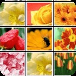 鲜花朵朵连连看 休閒 App LOGO-硬是要APP