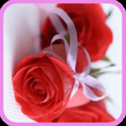浪漫玫瑰花动态壁纸 工具 App LOGO-APP開箱王