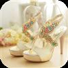 女士夏季凉鞋的魅力 書籍 App LOGO-硬是要APP