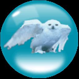私密高清红外透视仪 攝影 App LOGO-硬是要APP