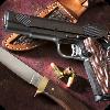 世界名枪集锦 工具 App LOGO-APP試玩