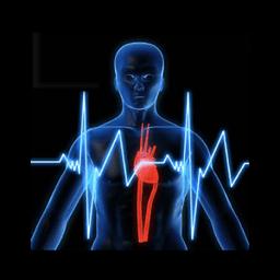 生理年龄计算器 健康 App LOGO-硬是要APP