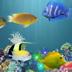 水族馆唯美动态壁纸 工具 App LOGO-硬是要APP