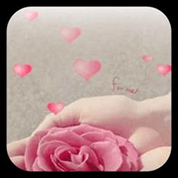 玫瑰动态壁纸 工具 LOGO-玩APPs