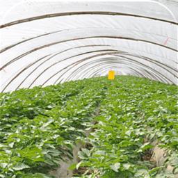农产品 新聞 App LOGO-硬是要APP