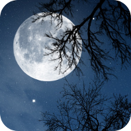 Relax Night 音樂 App LOGO-APP試玩