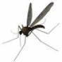 灭蚊器 生活 App LOGO-APP試玩