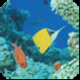 工具App|海洋生物第一辑主题壁纸 LOGO-3C達人阿輝的APP