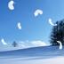 唯美雪景动态壁纸 工具 App LOGO-硬是要APP