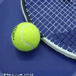 新手网球图解教程 攝影 App LOGO-APP試玩