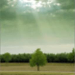 碧连天动态壁纸 工具 App LOGO-硬是要APP