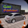Hard Car Parking
