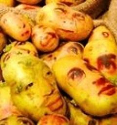 土豆的做法 生活 LOGO-玩APPs
