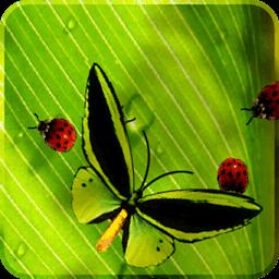 攝影必備App|趣味小虫动态壁纸forpad LOGO-綠色工廠好玩App
