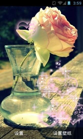 玫瑰恋·誓言动态壁纸