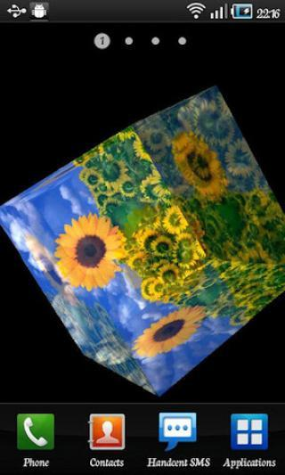 向日葵壁纸