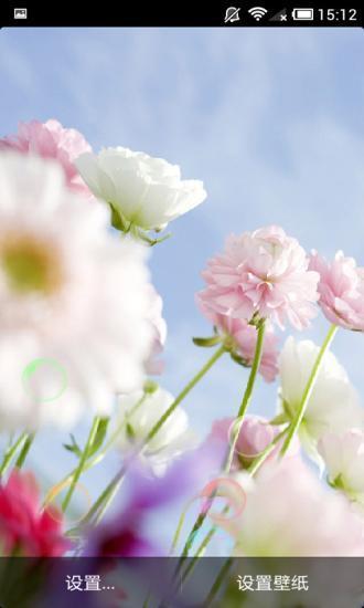 非主流花儿朵朵动态壁纸