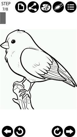 玩免費工具APP|下載绘制小鸟 app不用錢|硬是要APP