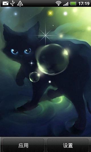 精美黑猫动态壁纸