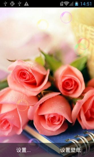 恋玫瑰花动态壁纸