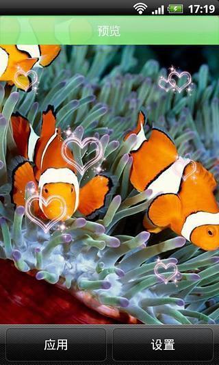 热带小丑鱼动态壁纸
