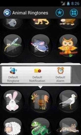 玩音樂App|动物铃声免費|APP試玩
