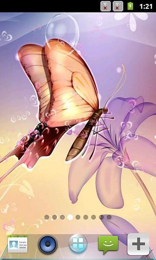 魅力蝴蝶动态壁纸