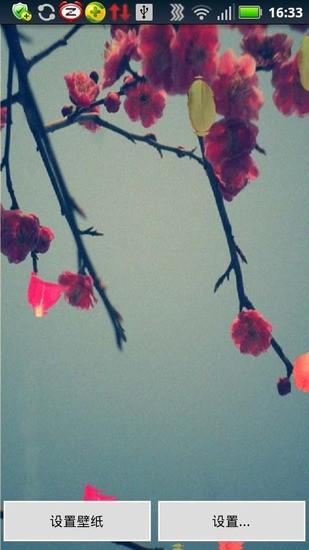 桃花飘(动态壁纸)