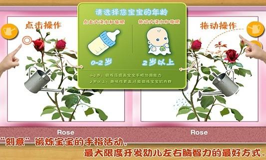 宝宝种鲜花-傲贝儿童百科