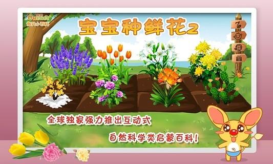 宝宝种鲜花第2季-傲贝儿童百科