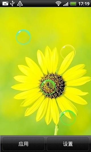 小清新美丽植物动态壁纸