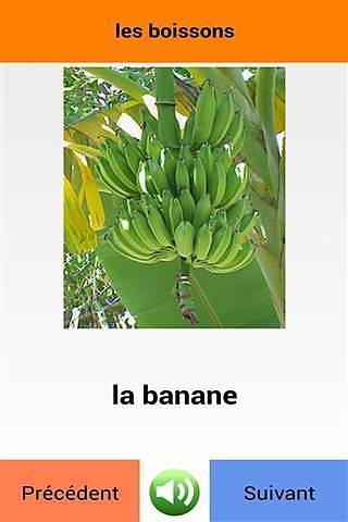 学习法语单词