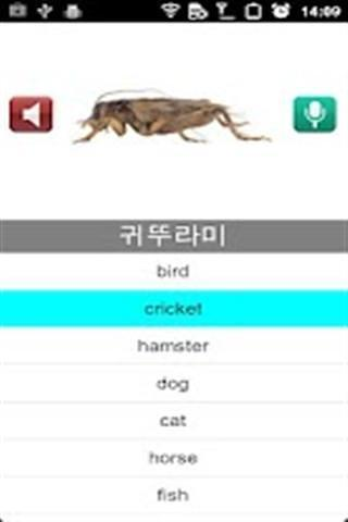 快速学韩语