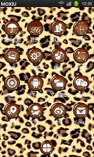 豹纹儿控起来魔秀桌面主题 (壁纸美化软件)