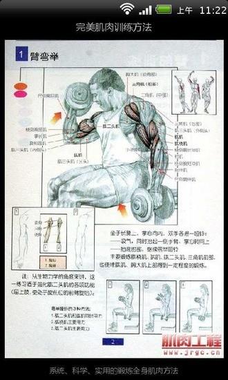 完美肌肉训练方法