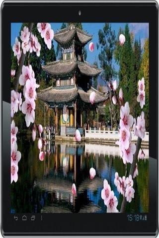 亚洲花园动态壁纸