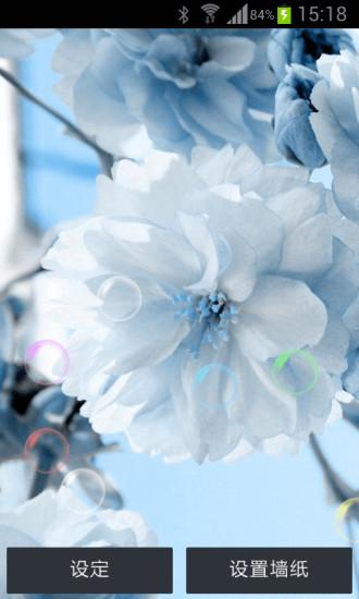 漂亮花朵动态壁纸