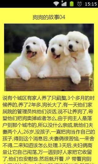 那些关于狗狗们的故事