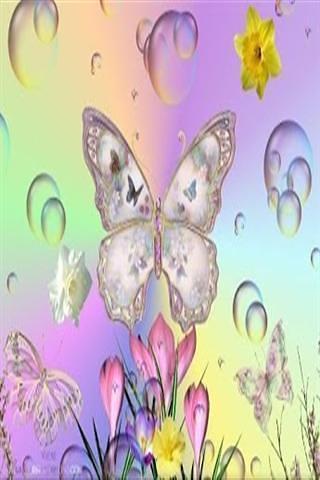 3D蝴蝶动态壁纸
