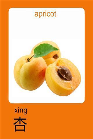 婴儿学习卡——水果