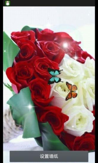 唯美玫瑰-绿豆秀秀动态壁纸